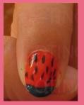 nail art sandia