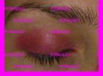sombra rosa fashionista