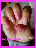 flores rosas.jpg